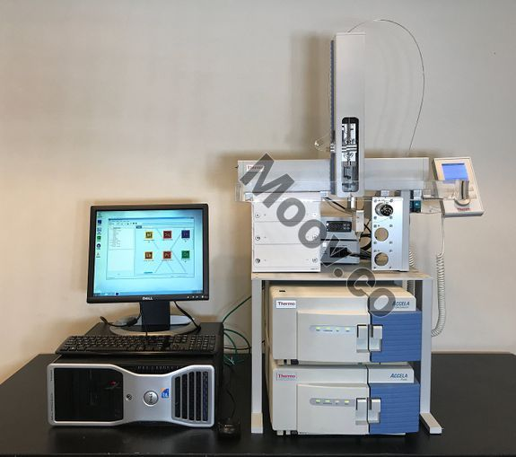 THERMO FISHER SCIENTIFIC ACCELA for sale